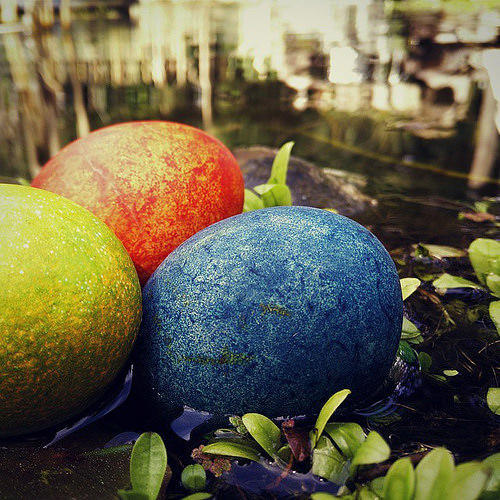 Easter eggs hiding near the pond.